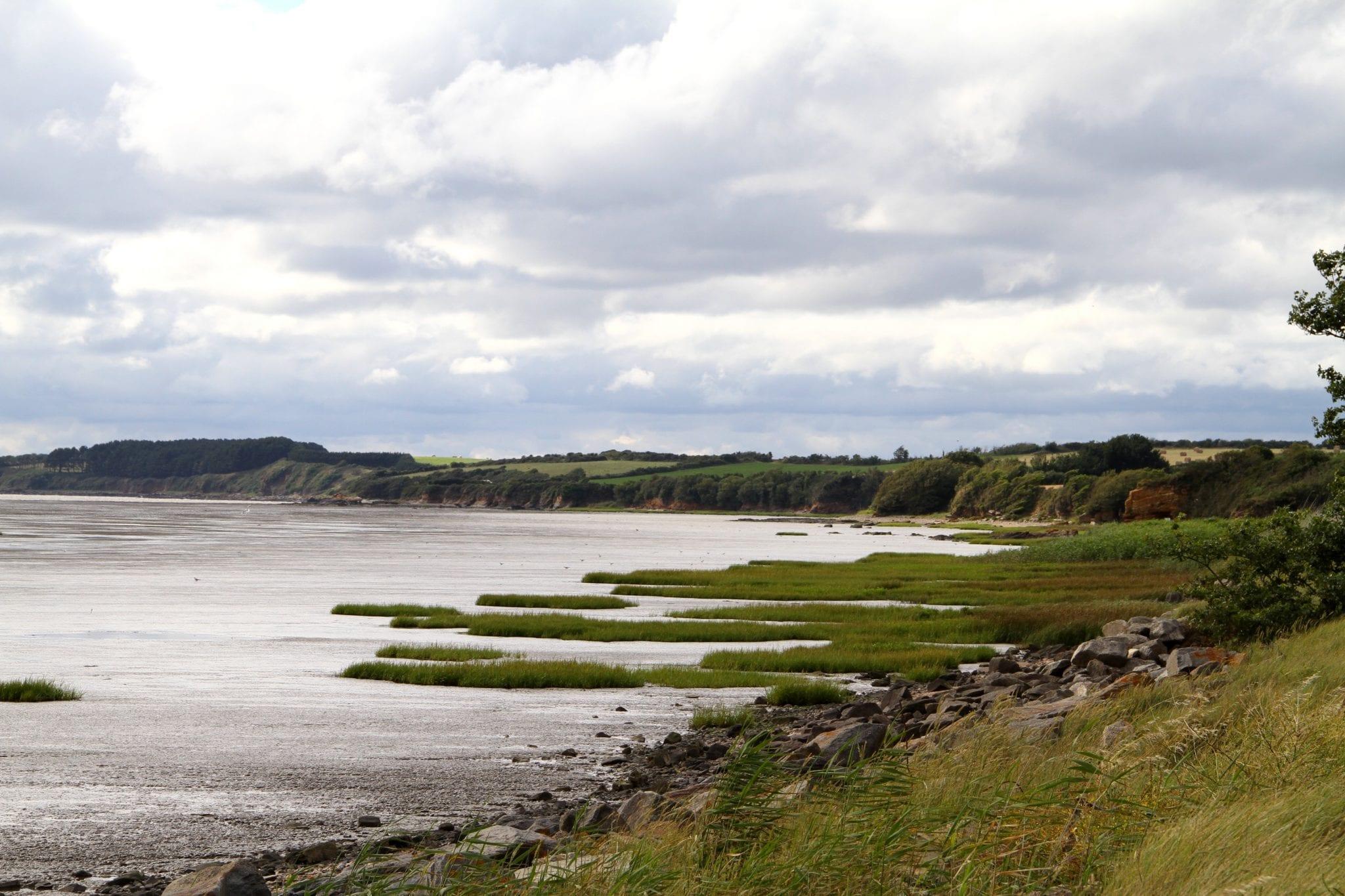 muzillac-littoral © TASB (4)